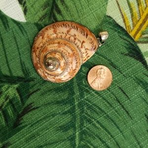 Jewelry - Shell Pendant